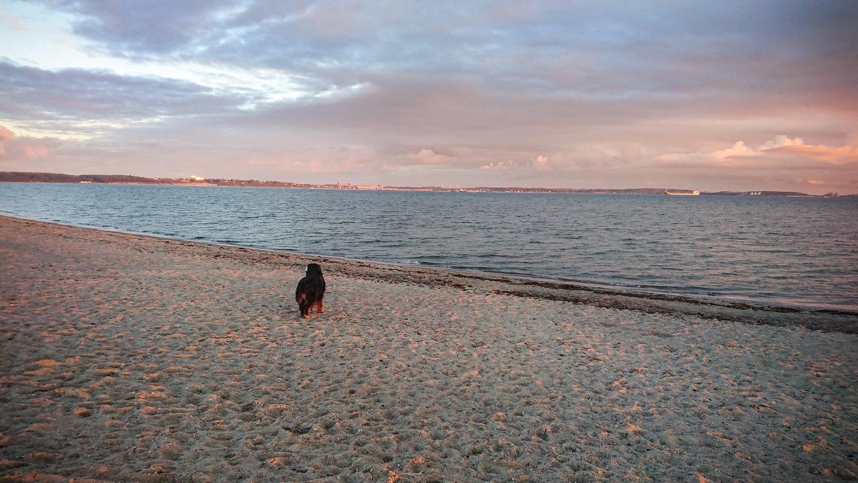 Da lohnt sich das frühe Aufstehen: Morgendlicher Spaziergang am Strand von Laboe.