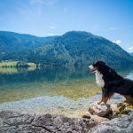 Von Super-Seen und Sommer-Eishöhlen