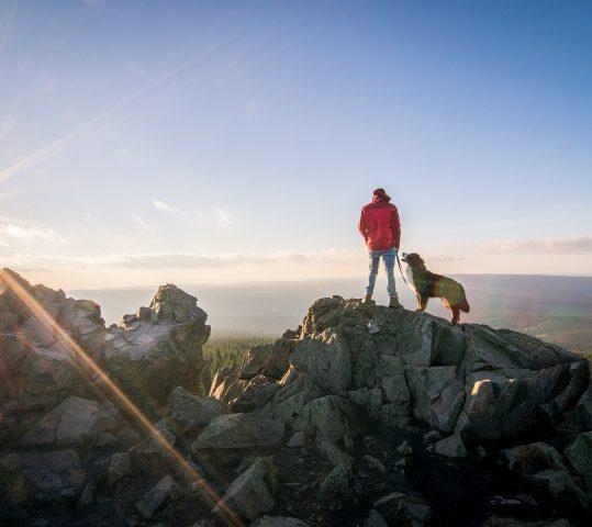 5 Helfer für die Reiseplanung mit Hund