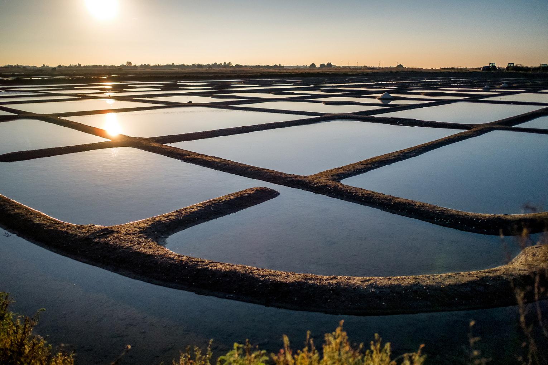 In jedem Fall ein Hingucker: Die Salzgärten auf der Île de Noirmoutier.