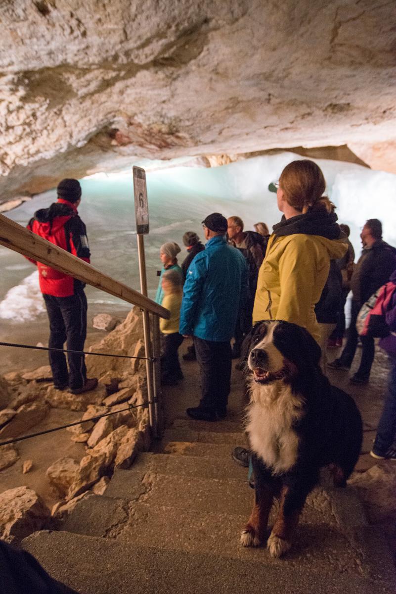 Höhlenhund: Jodie guckt lieber zum Fotoapperat, während Bine dem Tourguide lauscht.