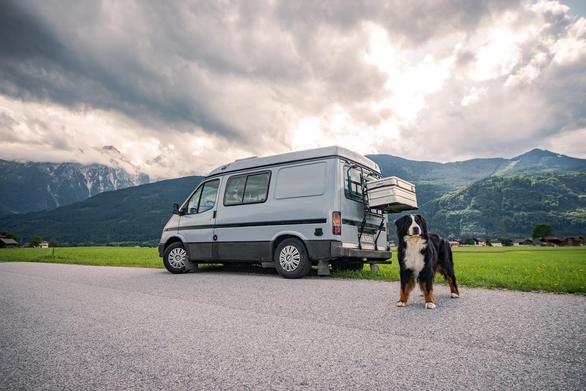 Passende Kulisse für Jodie: Auf dem Weg vom Taugltal zum Gollinger Wasserfall.