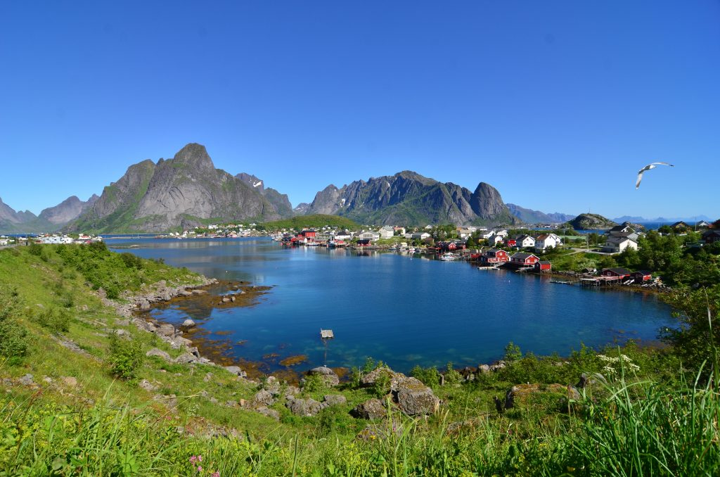 Blick auf Reine i Lofoten - ganz kitschig mit Möwe.