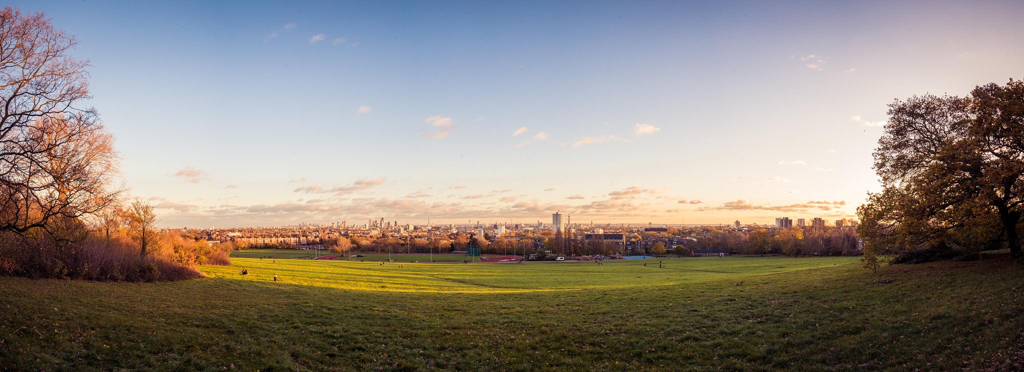 Ausblick von Hampsted Heath auf London