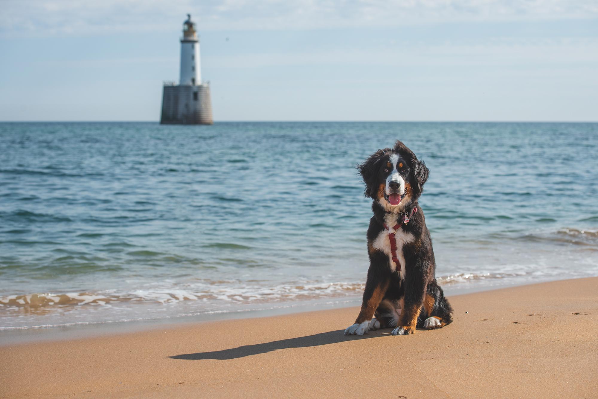 Ceeley am Strand von Rattray Head