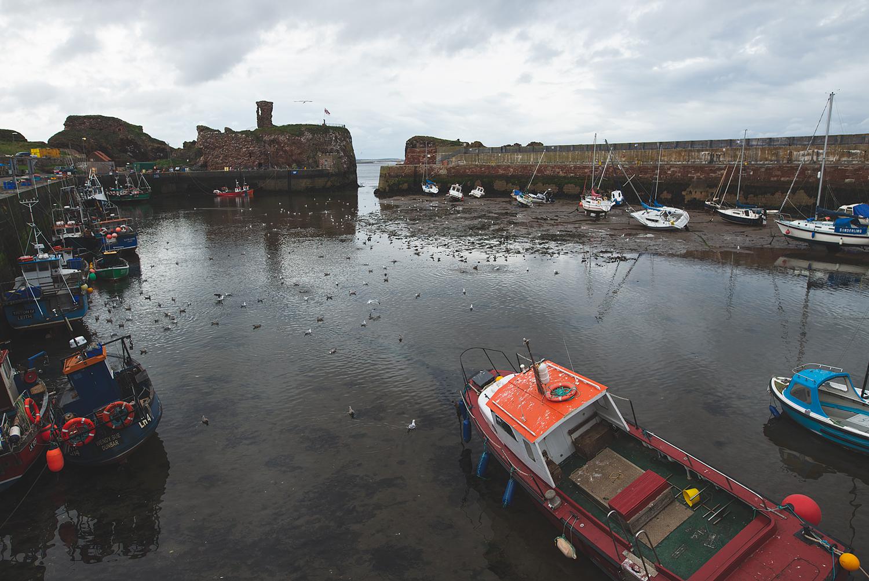 Überschaubar groß: Der Hafen von Dunbar.