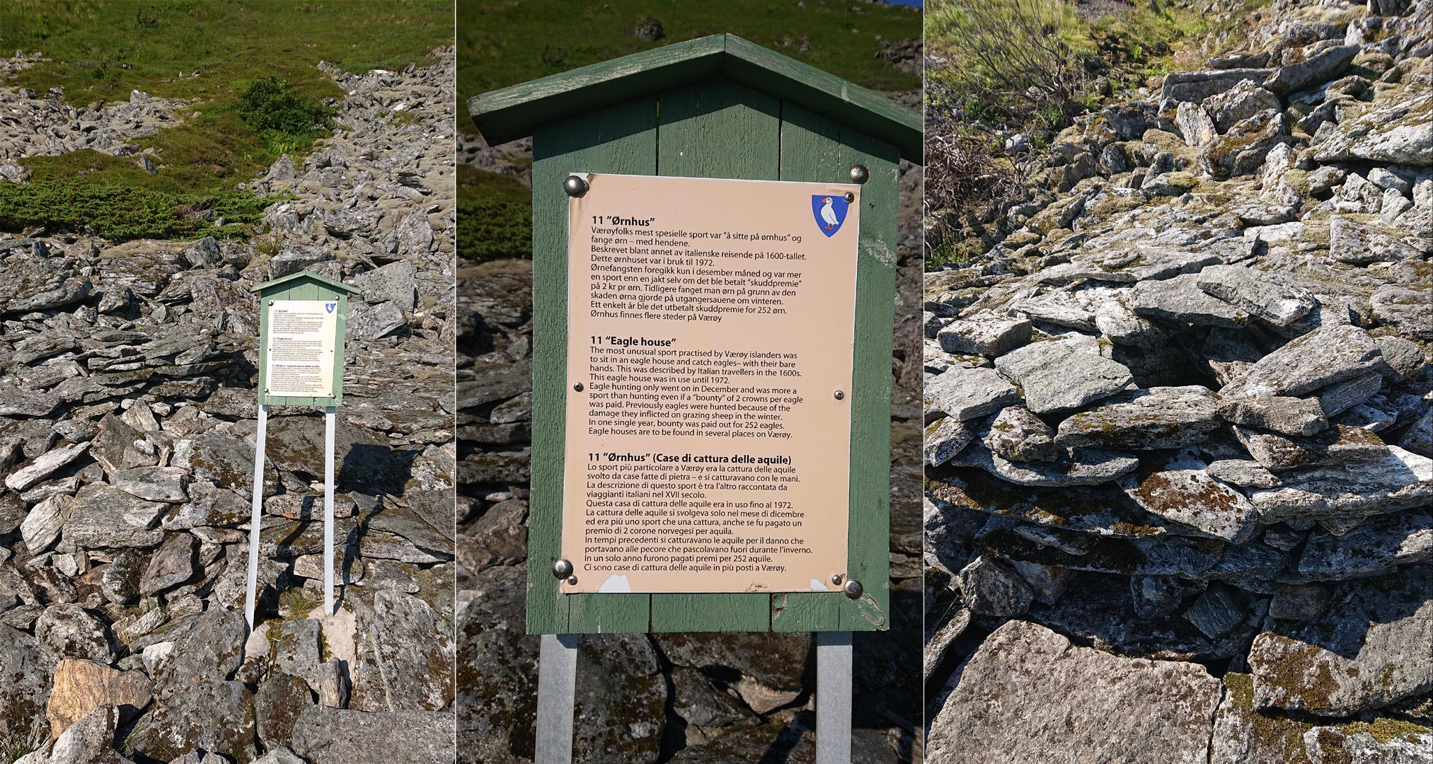 Das Adlerfangen war auf Værøy ein fragwürdiger Jagdsport.